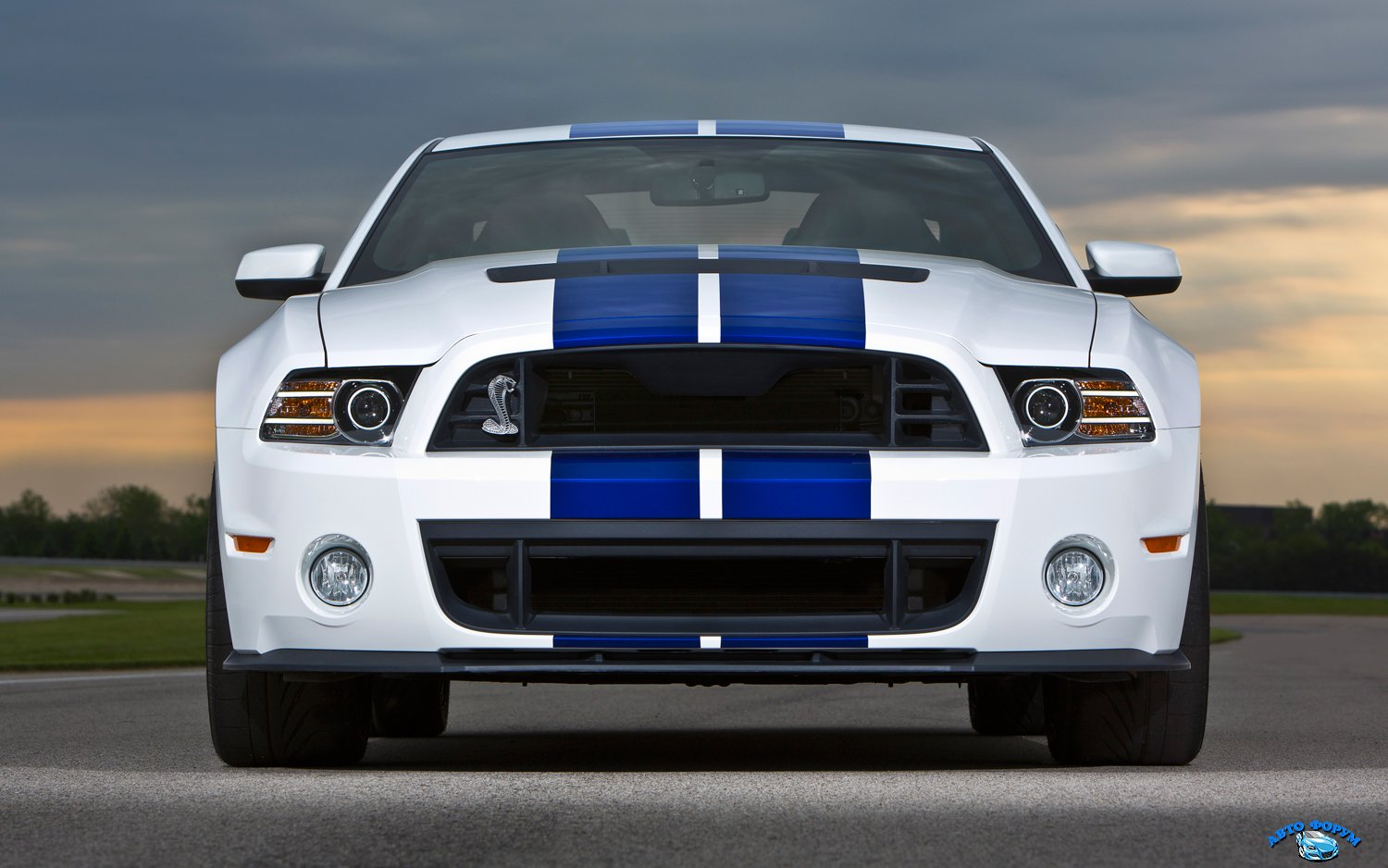 2013-ford-shelby-gt500-front-end-2.jpg