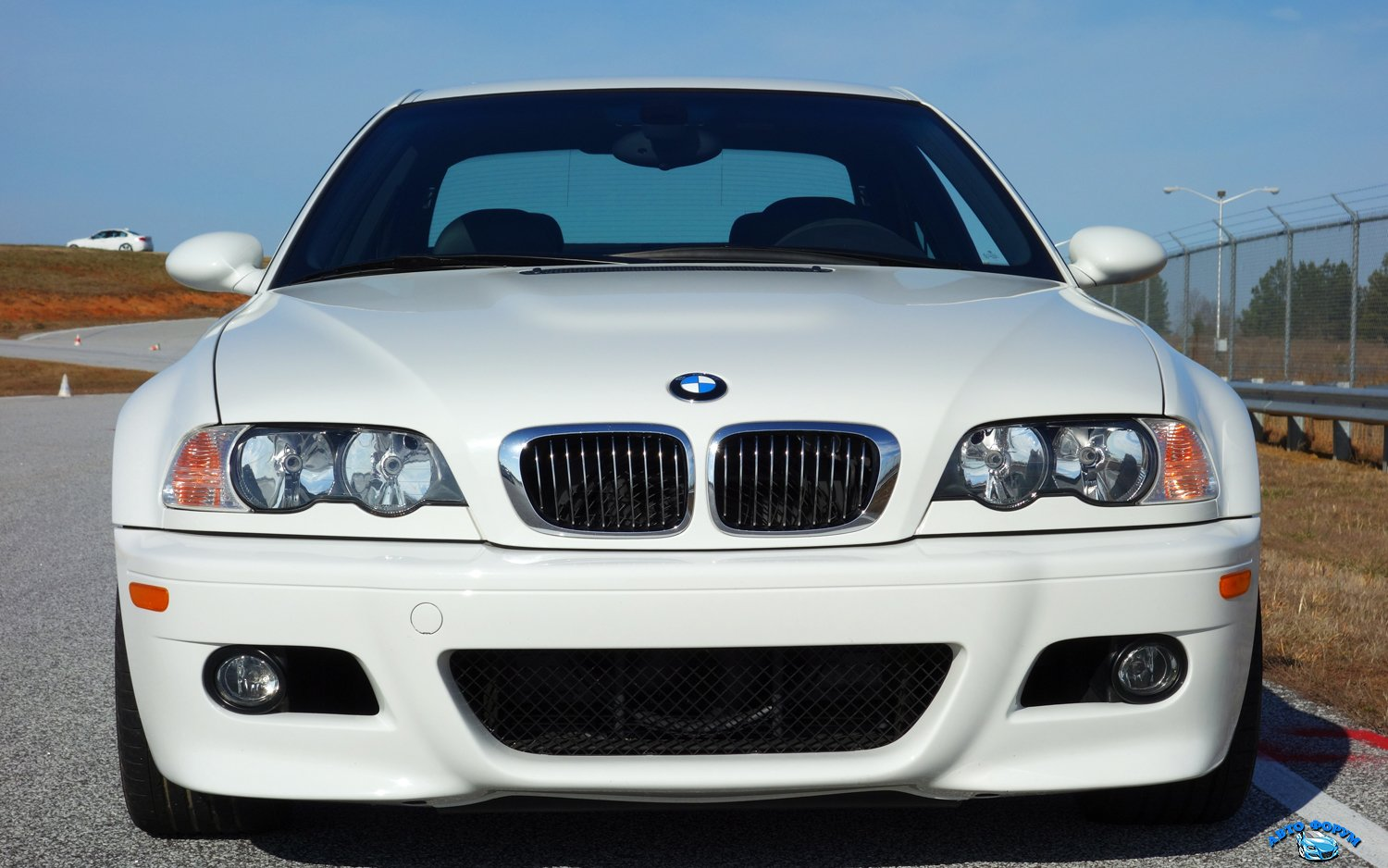 bmw-m3-e46-front-grille.jpg