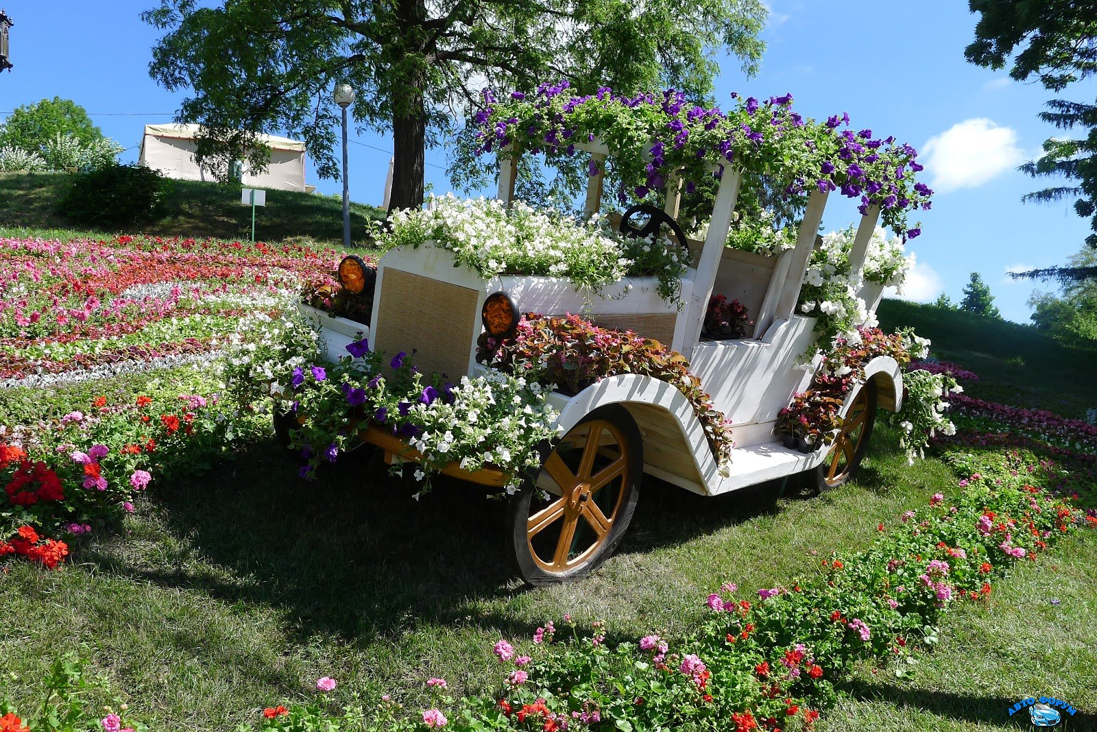 flower car show (2).JPG