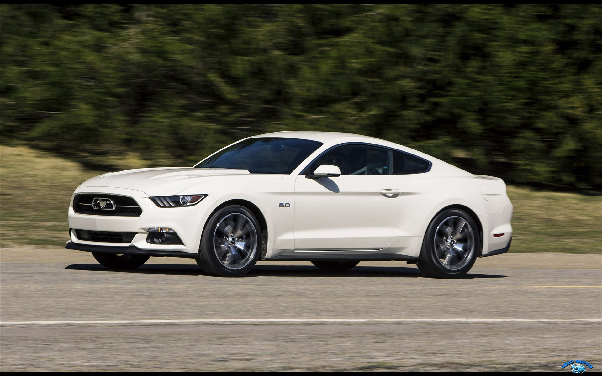 Ford-Mustang-50-Year-Limited-Edition-2015-widescreen-15.jpg